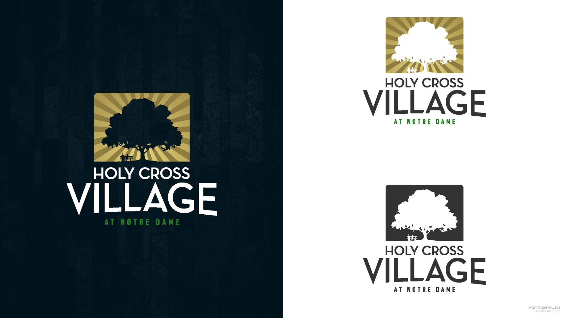 HCV Logo Concepts - Round 2